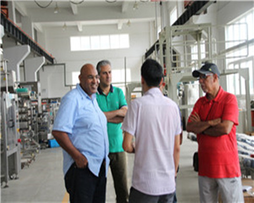 Egyptian clients visited the project of the packaging machine